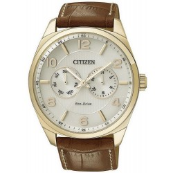 Men's Citizen Watch Metropolitan Eco-Drive AO9024-16A Multifunction