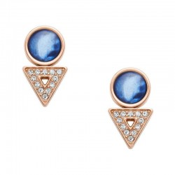 Buy Women's Fossil Earrings Classics JF03009791